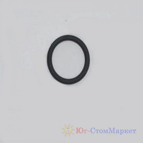 Резиновая прокладка 10.00x1.50 для сопла AF H2 | EMS (Швейцария)